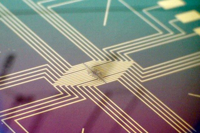 Био-наноэлектронные интерфейсы